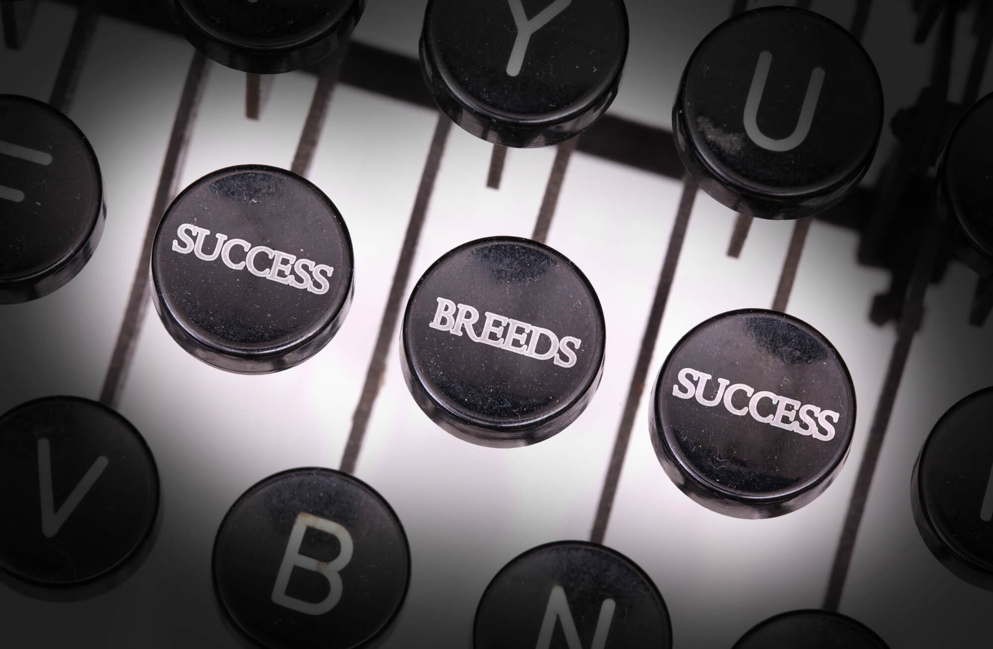 Read more about the article Success Breeds Success!